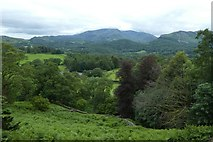 NY3404 : Looking down over Loughrigg by DS Pugh