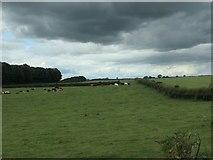 SE8947 : Dark clouds over Londesborough Wold by Christine Johnstone