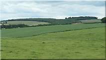 SE8947 : Londesborough Wold farmland by Christine Johnstone