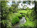SU0498 : River Churn near South Cerney by Malc McDonald