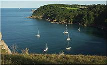 SX9364 : Yachts off Anstey's Cove by Derek Harper