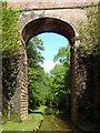 SJ6931 : Hollings Bridge in Woodeaves Cutting, Staffordshire by Roger  Kidd