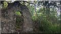 SN8808 : Llwyn-yr-egwan by Stephen Rees
