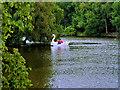 SD8303 : Swan Pedalo at Heaton Park by David Dixon