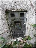 SP8800 : Bench Mark on Triangulation Pillar near Prestwood by David Hillas