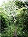 NZ2874 : Public footpath near Seghill Hall by Oliver Dixon
