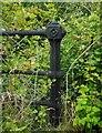 NS4994 : Bridge railings detail by Richard Sutcliffe