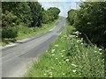 TA0769 : Nine Dikes Road heading south to the B1253 by Christine Johnstone
