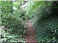 SK2823 : Hollow lane by Ian Calderwood