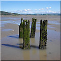 SD4673 : Posts in the mud, Jenny Brown's Point by Ian Taylor
