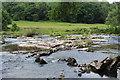 SO1619 : River Usk, Cyffredin by M J Roscoe
