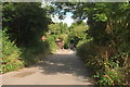 SX9491 : Ludwell Lane #8 by Derek Harper