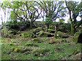 SX6672 : Pixies Cave Dartmeet Dartmoor - Approach by Sloop John B