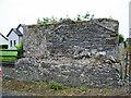 R6434 : Ballyvulhane near Bruff, Limerick, house ruin by Garry Dickinson