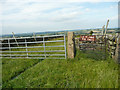 SE2202 : Gate on the footpath from Hartcliff Road to Cross Lane, Thurlstone by Humphrey Bolton