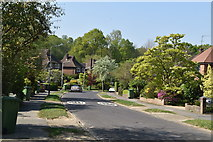 TQ5938 : Delves Avenue by N Chadwick
