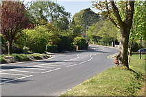 TQ5938 : Empty Forest Rd by N Chadwick