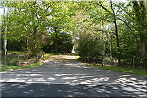 TQ5937 : Track to Little Mount Farm by N Chadwick