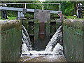 SJ6541 : In Audlem Top Lock, Cheshire by Roger  Kidd