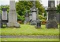 NS6067 : Deer amongst the gravestones by Richard Sutcliffe