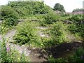NZ2057 : Derelict railway turntable pit by the Tanfield Railway by Oliver Dixon