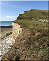 TV5097 : Cliff edge above Hope Gap, Seaford Head by Robin Stott