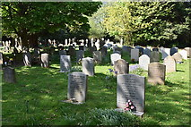 TQ5935 : Graves, Frant by N Chadwick