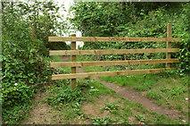 SX9364 : Barrier, Anstey's Cove by Derek Harper