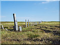 NY7837 : Fence line crossing summit area of Burnhope Seat by Trevor Littlewood