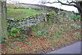 SD8489 : Dry stone walls bounding field on SE side of Lanacar Lane by Roger Templeman
