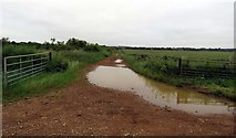 SK8030 : Field track to west of  Branston to Barkestone road by Andrew Tatlow
