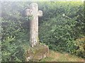 SD8050 : Old Wayside Cross by D Phillips
