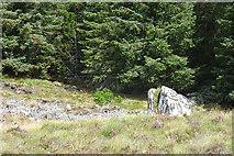 NJ0847 : Grey Stones of Grevach by Anne Burgess