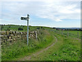 SE2042 : Bend on the bridleway to Yeadon by Stephen Craven
