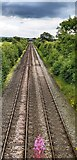 SJ5159 : Railway from the Crimes Lane overbridge by Anthony Parkes
