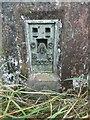 SP8203 : Bench Mark on Triangulation Pillar near Green Hailey by David Hillas