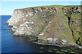 NJ8167 : Cliffs east of Collie Head by Anne Burgess