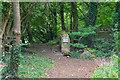 ST7764 : Bathampton : Footpath by Lewis Clarke