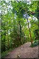 ST7765 : Bathampton : Footpath by Lewis Clarke