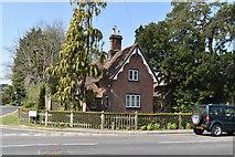 TQ5938 : Camden Lodge by N Chadwick