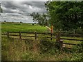 SK3414 : Footpath to Packington from the A42 J12 by Oliver Mills