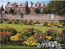 NT6779 : Fabulous Flower Beds in Dunbar by Jennifer Petrie