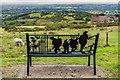SO5975 : Memorial seat by Ian Capper