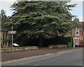 SO8005 : Stonehouse railway station direction sign by Jaggery