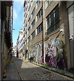 NS5865 : Graffiti style mural on Renfield Lane by Thomas Nugent