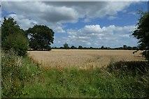 SE6350 : Fields beside Green Lane by DS Pugh