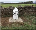 NY5628 : Replacement Milepost by the A66, east of Penrith by Terry Moore