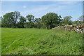 NY6112 : Woodland by Lyvennet Beck by Andy Waddington