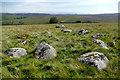 NY6011 : Stone circle on White Hag by Andy Waddington
