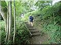 SJ0970 : Offa's Dyke Path by Eirian Evans